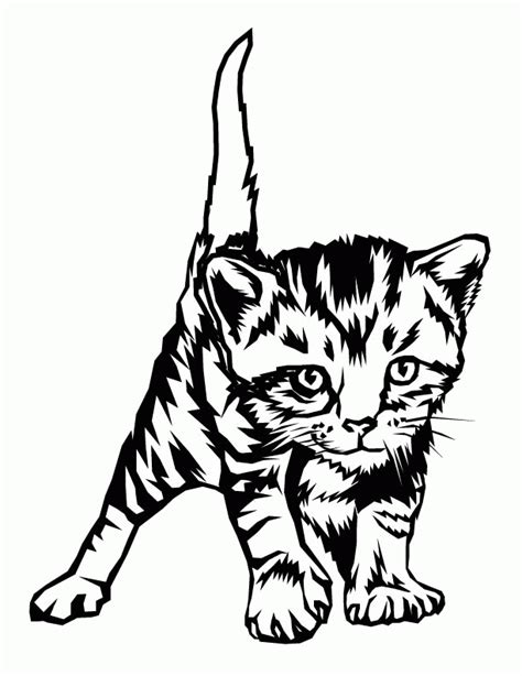 kitten coloring pages  print coloring home