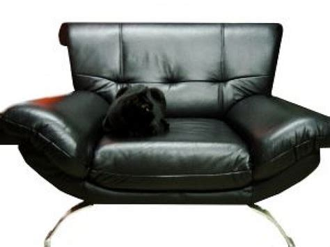 Black Cat On A Black Armchair Photo