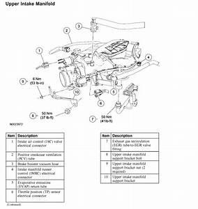 2002 Ford Taurus Wiring