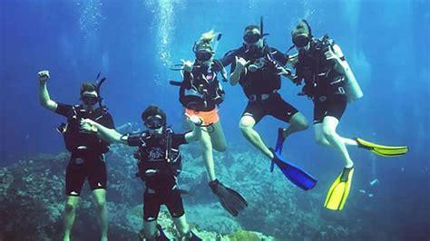 SCUBA Diving Koh Tao Thailand   Scuba Junction Diving - Home