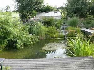 Kleinen Teich Anlegen. gartenteich richtig gestaltet idee nur einen ...