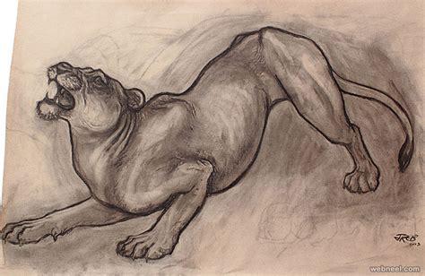animal drawing  full image