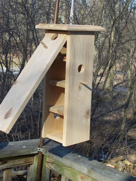 cleaning bird feeders bath houses boxes