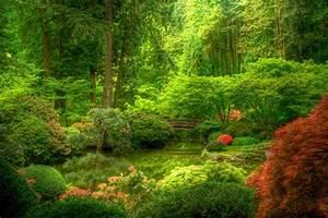 la beaute exotique du jardin japonais With decoration jardin zen exterieur 1 le jardin zen le petit bijou de la sagesse exotique