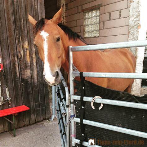 Stall Suchen Pferd