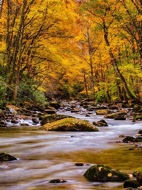 Beautiful Pictures Of Nature Wallpaper by Smoky Mountain Wallpaper Wallpapersafari