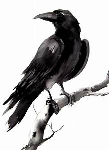 Crow, raven original watercolor painting 9 X 12 | Artworks ...