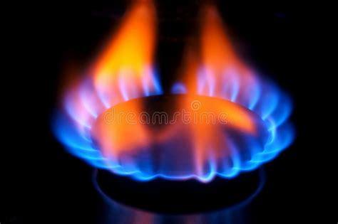 Gas Burner Flame Stock Photo. Image Of Life, Dark, Burner