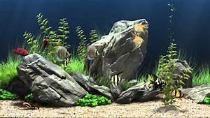 Dream Aquarium Virtual Fishtank #1 - YouTube