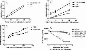 Antioxidant Activity Of Tse   A  Cell Free Reducing Power