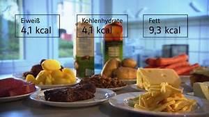Kalorien Fett Eiweiß Kohlenhydrate Berechnen : kalorien w wie wissen ard das erste ~ Themetempest.com Abrechnung