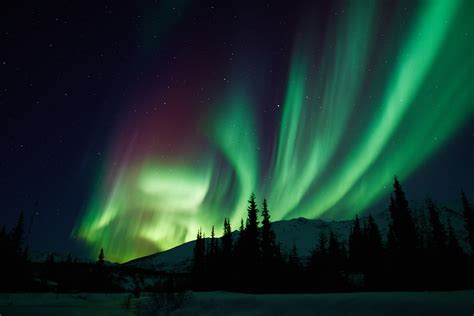 lights in alaska northern lights in coldfoot alaska the unsettled settler