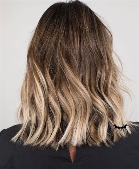 Brown And Ombre Hair by 25 Stunning Exles Of Brown Ombr 233 Hair Byrdie