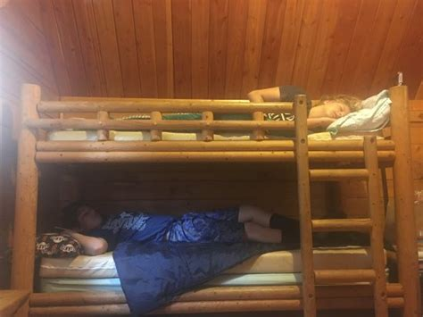 placerville koa updated  campground reviews shingle