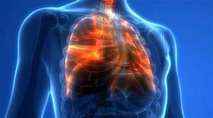 Effects Of Air Pollution On Lungs