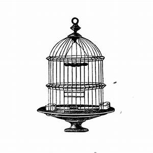 Blue Ridge Corner Images: Vintage Bird Cage ~ Black and ...