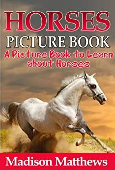 childrens book  horses  kids picture book
