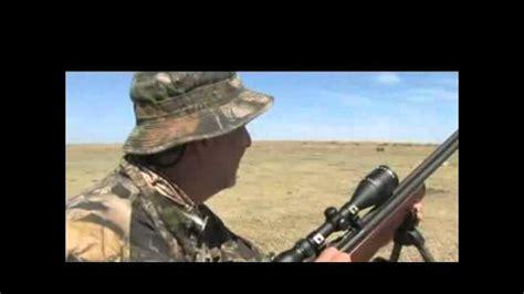 airgun  corsair big bore airguns   prairie dogs