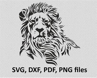Cricut Silhouette Lion Svg Designs Cut Shirt