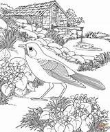Coloring Pages Garden Flower Landscape Oak Print sketch template