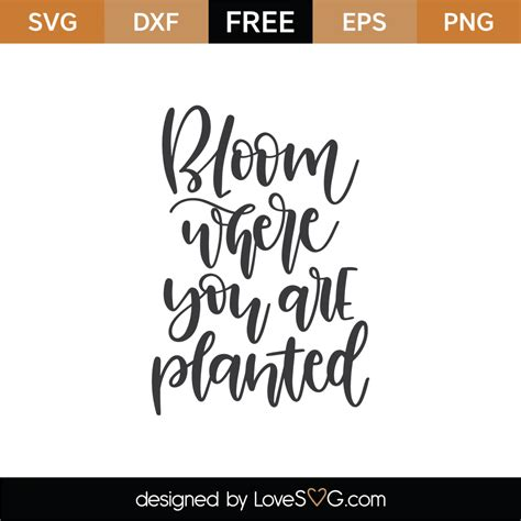 The sentiment of the phrase bloom where you are planted has been around for centuries, but the first publication of the exact phrase cannot be verified. Free Bloom Where You Are Planted SVG Cut File - Lovesvg.com
