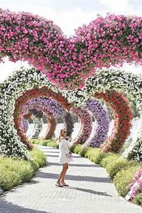 miracle garden dubai With katzennetz balkon mit garden boots