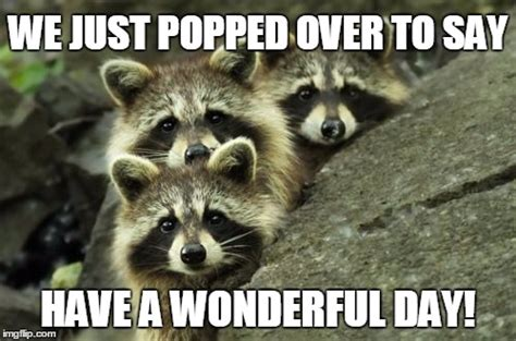 Nice Day Meme - it s another day imgflippers imgflip