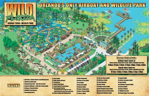 Airboat Rides And Zoo by Florida Airboat Rides Buggy Tour Tierpark