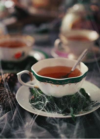 Halloween Aesthetic Tea Cinemagraphs Drink Stories Butteryplanet