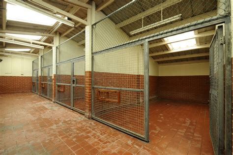 dog kennels bentwaters parks