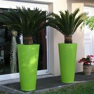 Grand Pot De Fleur Interieur : grands pots de jardin plantes vivaces pour massif maison ~ Premium-room.com Idées de Décoration