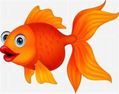Goldfish Fish Clipart Cartoon Clip Animated Animation