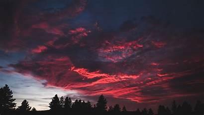 Sunset Dark Clouds Colorful Tree 4k Laptop