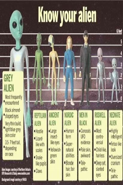 Types Aliens Chart Alien Know Nordic Known