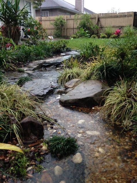 how to make a water bed the rainforest garden how to design a dry creek bed 10 tips