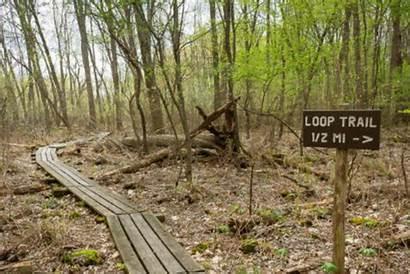 Loop Bog Trail April Woods Soggy Mounds