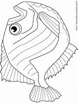 Hatchet Coloring Fish Pages Drawing Hatchetfish Template Clipart Stories Coloringpages101 Fishes Getdrawings Icp Sketch Printables sketch template