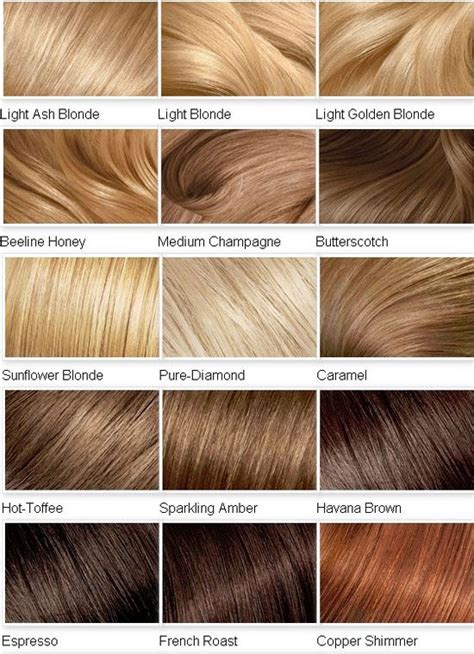 Hair Color Name And Picture by Best 25 Hair Color Names Ideas On