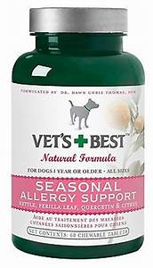 pet dog allergy tablets itch relief skin fleas for dogs natural medicine helps