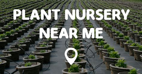 garden nursery me plant nursery me points me