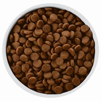 Canine Dry Hill Hills Dog Kibble Zd