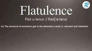 How To Pronounce Flatulence Flatulence Pronunciation