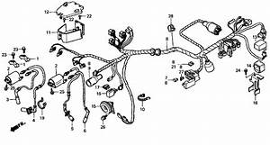 Honda Shadow 1100 C2 Wiring Diagram