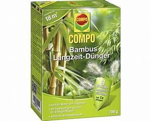 Compo Koniferen Langzeit Dünger : bambus langzeit d nger compo 700g bei hornbach kaufen ~ Frokenaadalensverden.com Haus und Dekorationen