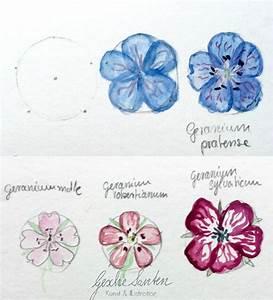 Aquarell Malen Blumen : botanik f r k nstler wie floristisches wissen deinen ~ Articles-book.com Haus und Dekorationen