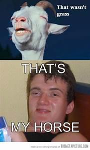 funny-high-guy-meme-goat-W630
