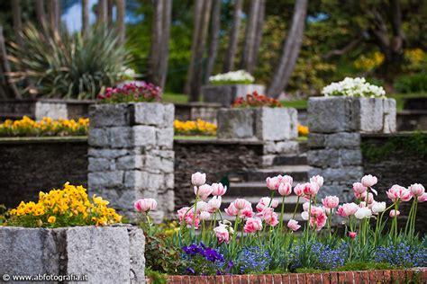 giardini terrazzati particolare dei giardini terrazzati giardini di villa