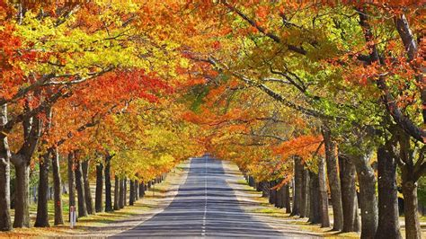 Fall Desktop Backgrounds Autumn Wallpaper by Beautiful Autumn Season Wallpapers All Hd Wallpapers