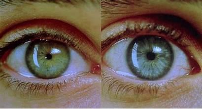 Pupille Dentro Nero Sei Tu Wattpad Ceneri