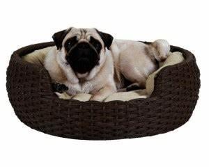 Panier Pour Petit Chien : panier pour chien comparatif avis ~ Teatrodelosmanantiales.com Idées de Décoration